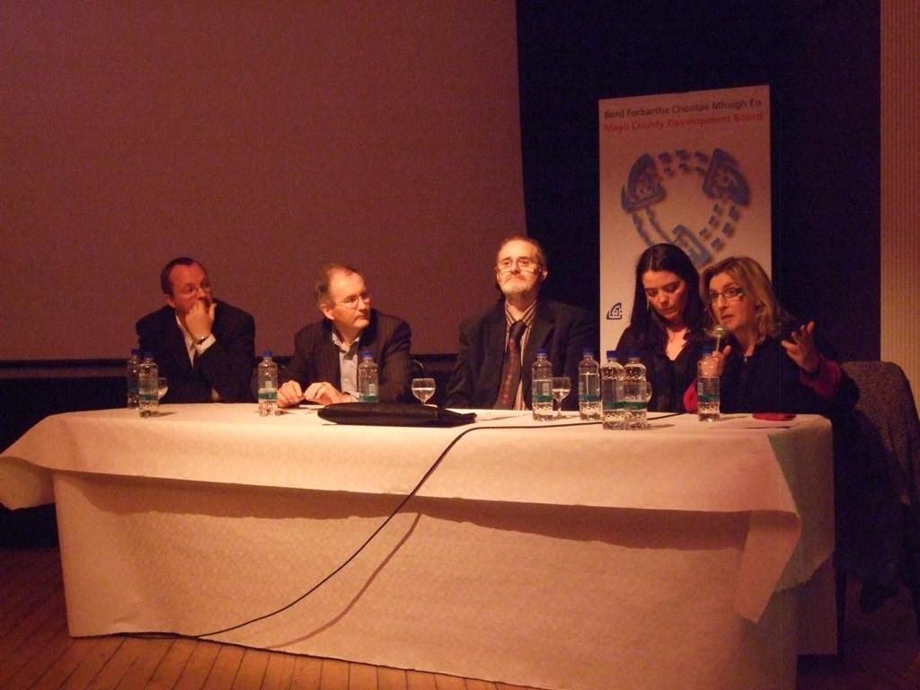 Digital Media and the Creative Industries - Castlebar - 2010